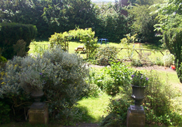 garden at Bank House