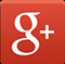 Google  + link to social site